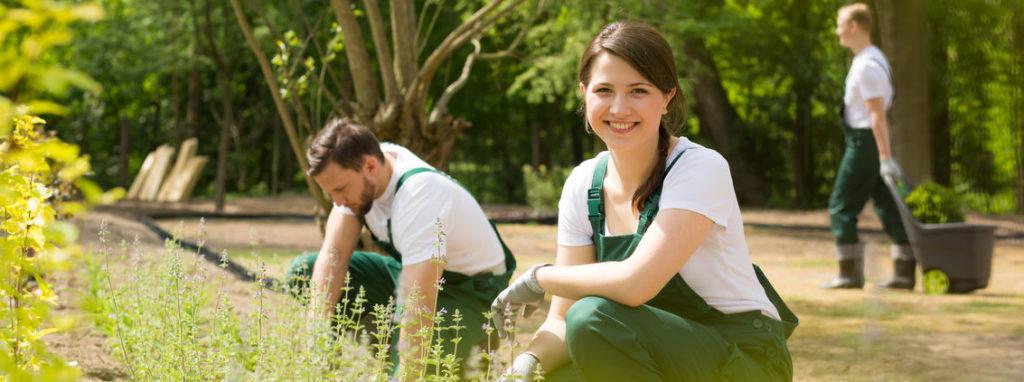 Anlægsgartner der laver gartnerarbejde
